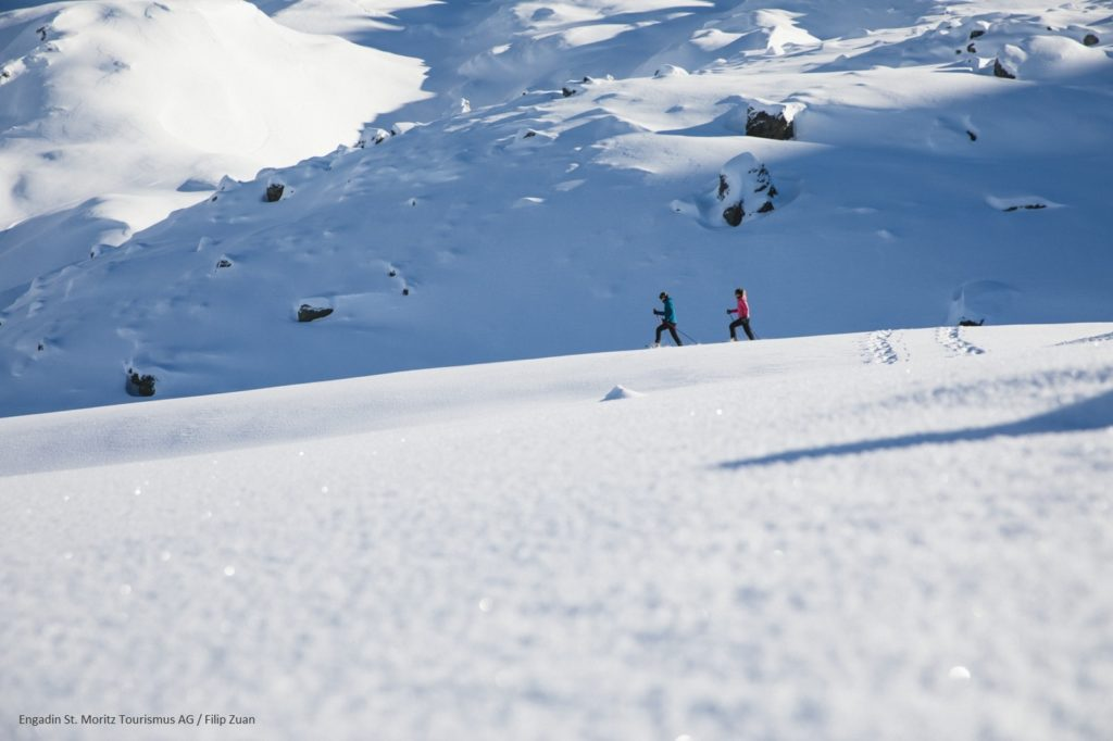 Snowshoe Engadin